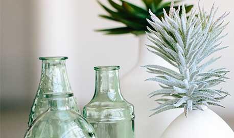 plants-jars