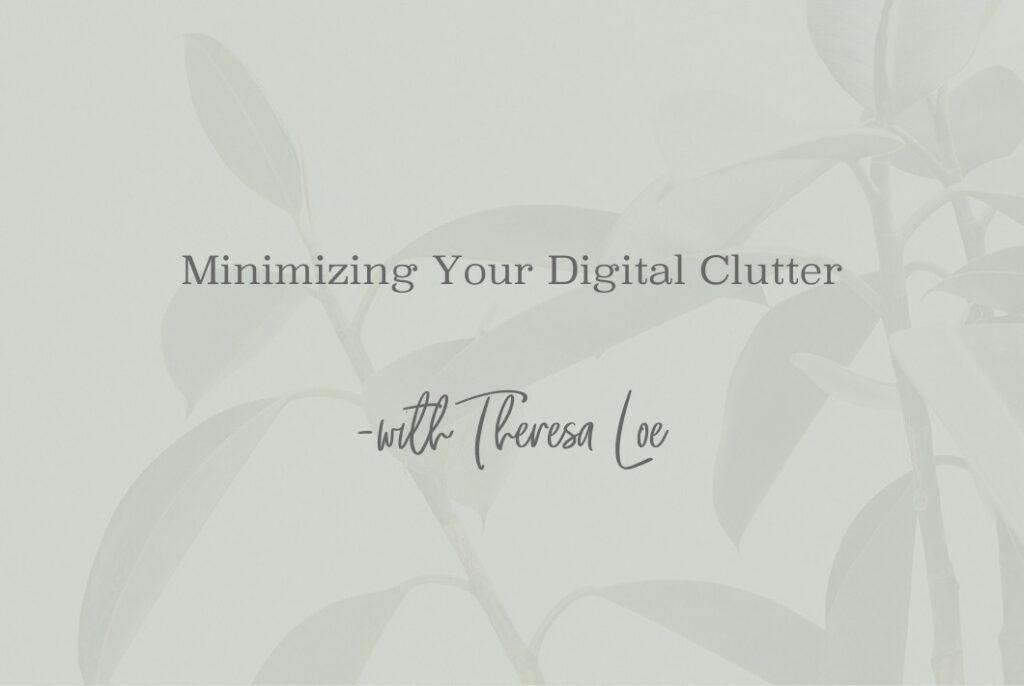 SS 106 Minimizing Your Digital Clutter - www.TheresaLoe.com